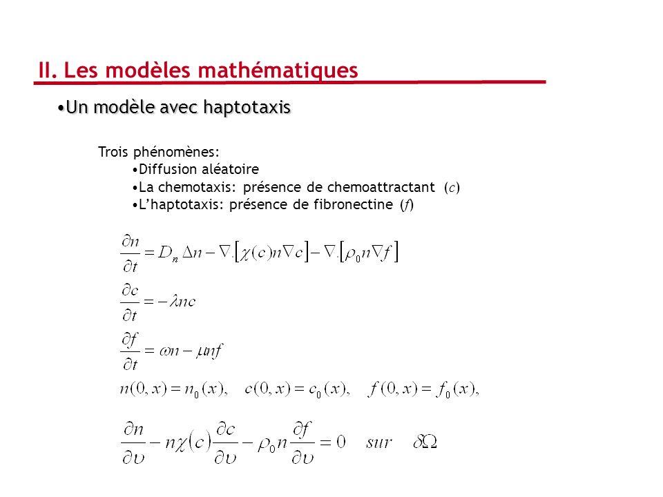 Un modèle avec haptotaxisUn modèle avec haptotaxis Trois phénomènes: Diffusion aléatoire La chemotaxis: présence de chemoattractant ( c ) Lhaptotaxis: