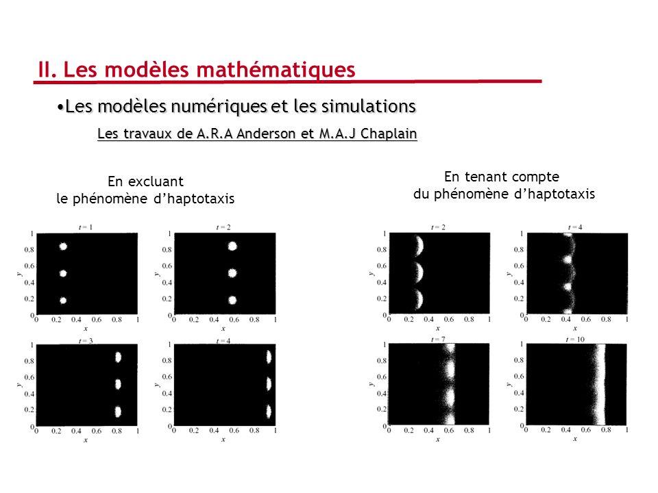 Les modèles numériques et les simulationsLes modèles numériques et les simulations Les travaux de A.R.A Anderson et M.A.J Chaplain En tenant compte du
