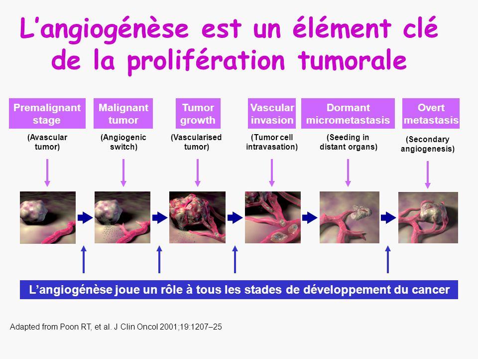 Langiogénèse est un élément clé de la prolifération tumorale Adapted from Poon RT, et al. J Clin Oncol 2001;19:1207–25 Langiogénèse joue un rôle à tou