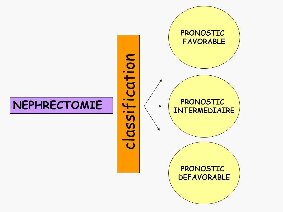 NEPHRECTOMIE PRONOSTIC FAVORABLE PRONOSTIC DEFAVORABLE PRONOSTIC INTERMEDIAIRE classification