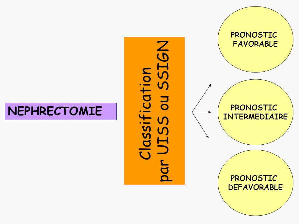 NEPHRECTOMIE PRONOSTIC FAVORABLE PRONOSTIC DEFAVORABLE PRONOSTIC INTERMEDIAIRE Classification par UISS ou SSIGN