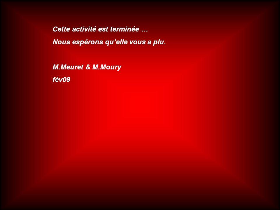 Cette activité est terminée … Nous espérons quelle vous a plu. M.Meuret & M.Moury fév09