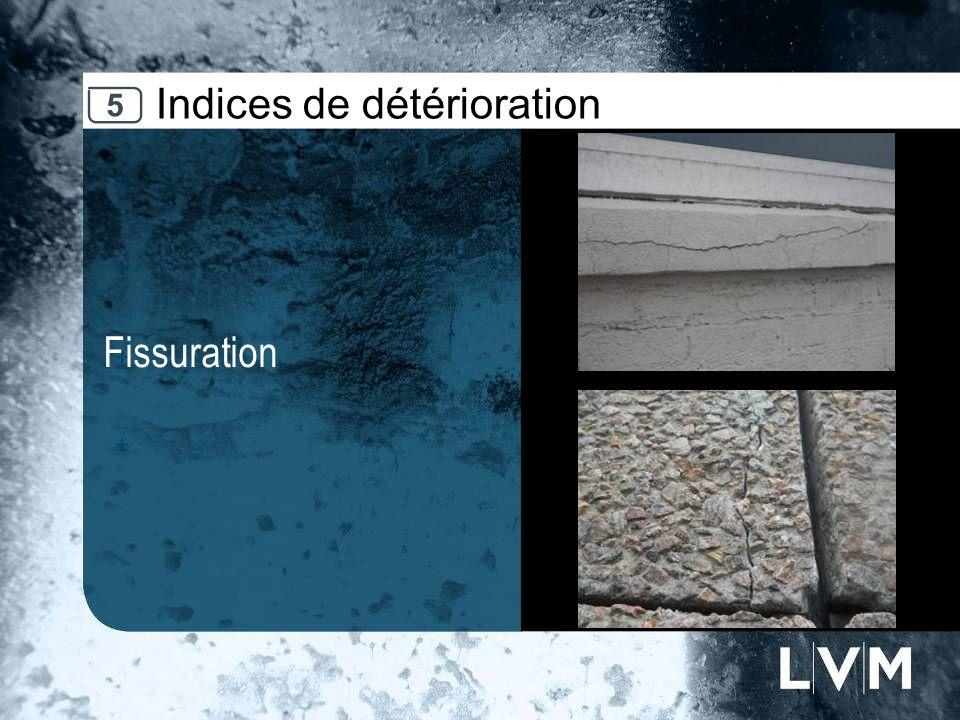 Indices de détérioration Fissuration Insert photo 5