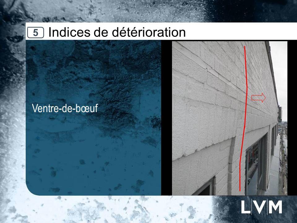 Indices de détérioration Ventre-de-bœuf Insert photo 5