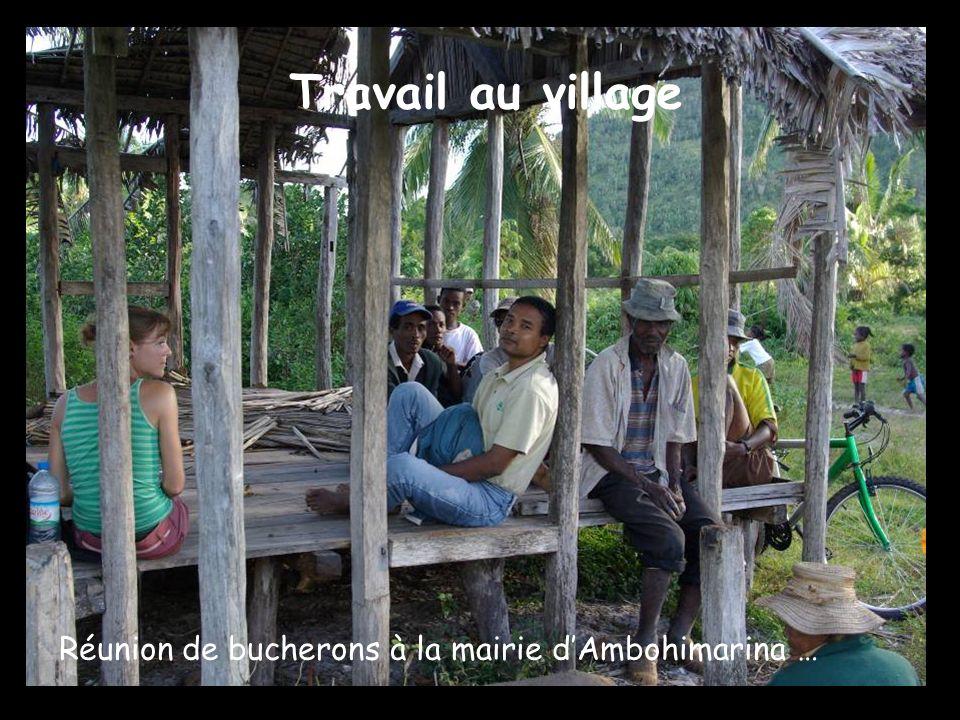 Travail au village Réunion de bucherons à la mairie dAmbohimarina …
