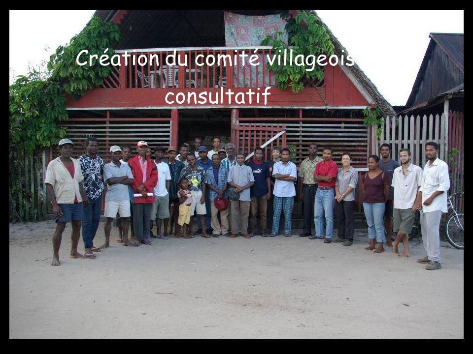 Création du comité villageois consultatif