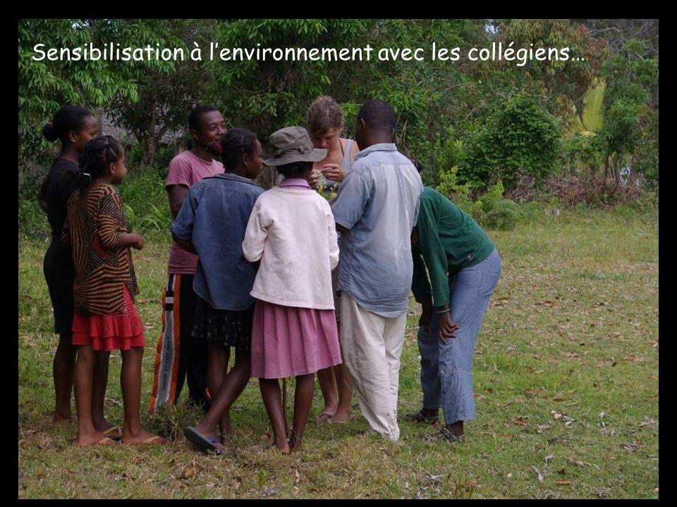 Sensibilisation à lenvironnement avec les collégiens…