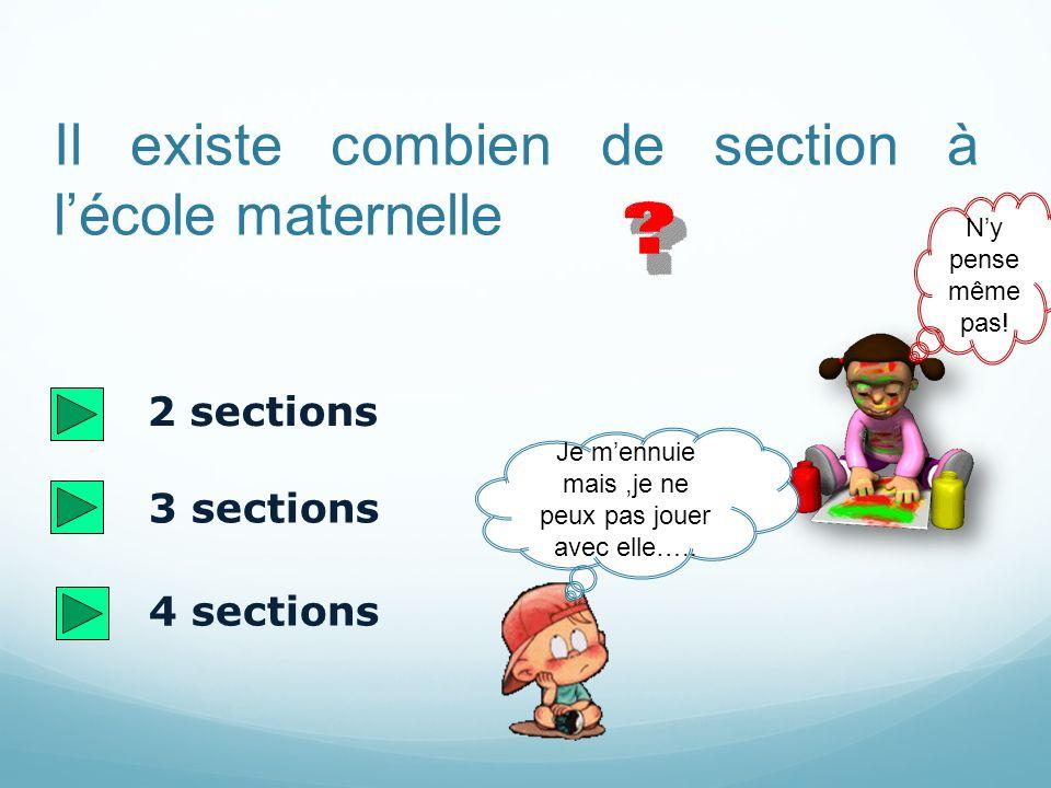 Il existe combien de section à lécole maternelle 2 sections 3 sections 4 sections Je mennuie mais,je ne peux pas jouer avec elle…..