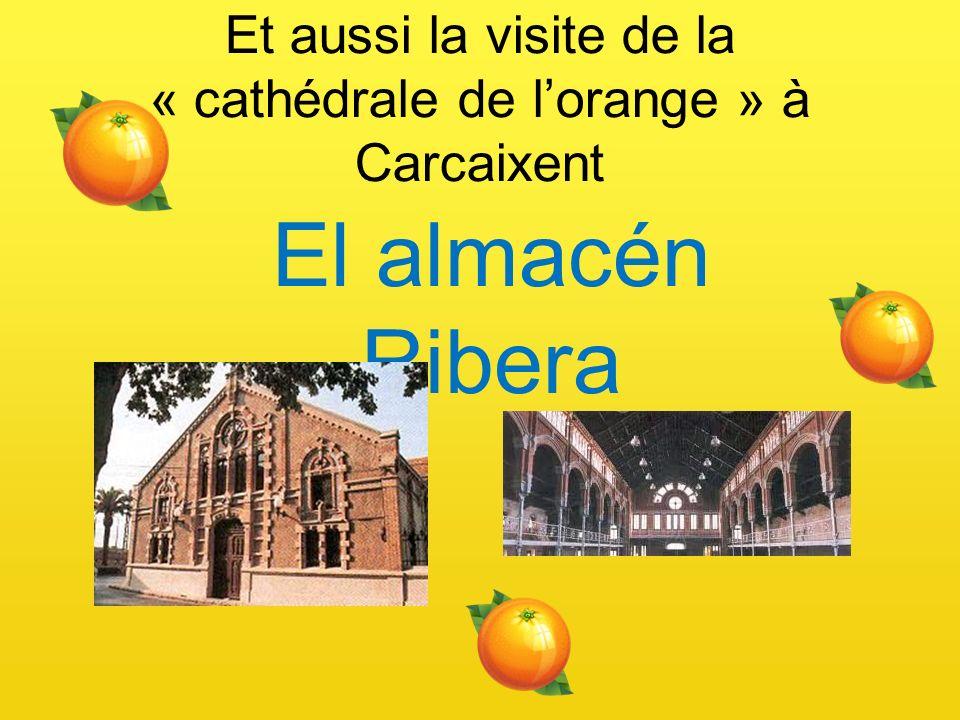 Et aussi la visite de la « cathédrale de lorange » à Carcaixent El almacén Ribera