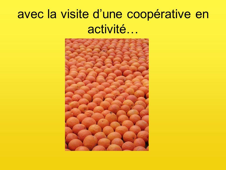 avec la visite dune coopérative en activité…