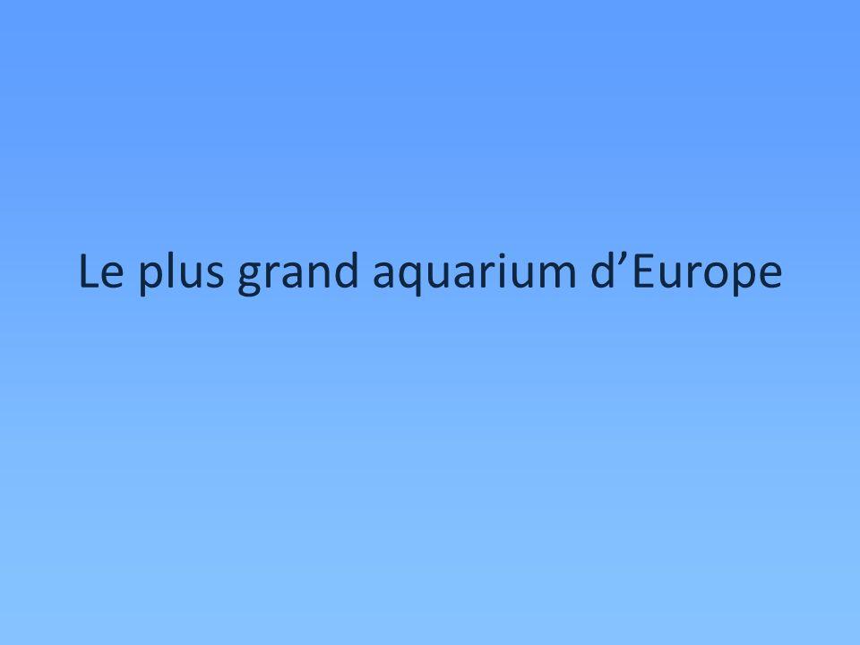 Le plus grand aquarium dEurope