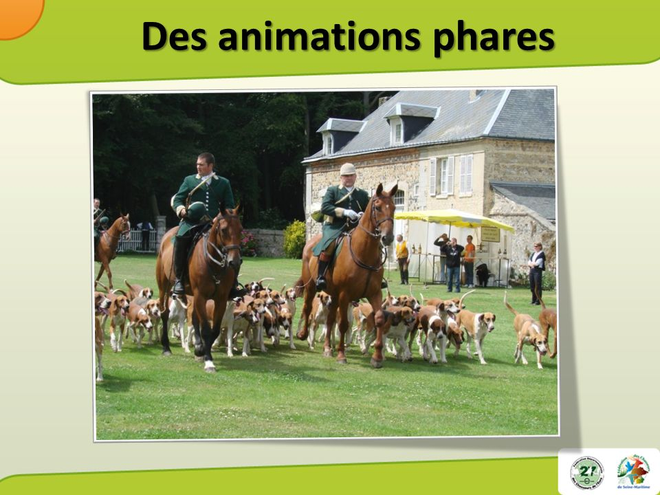 Des animations phares