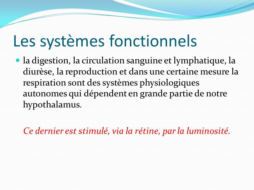 Les systèmes fonctionnels la digestion, la circulation sanguine et lymphatique, la diurèse, la reproduction et dans une certaine mesure la respiration sont des systèmes physiologiques autonomes qui dépendent en grande partie de notre hypothalamus.