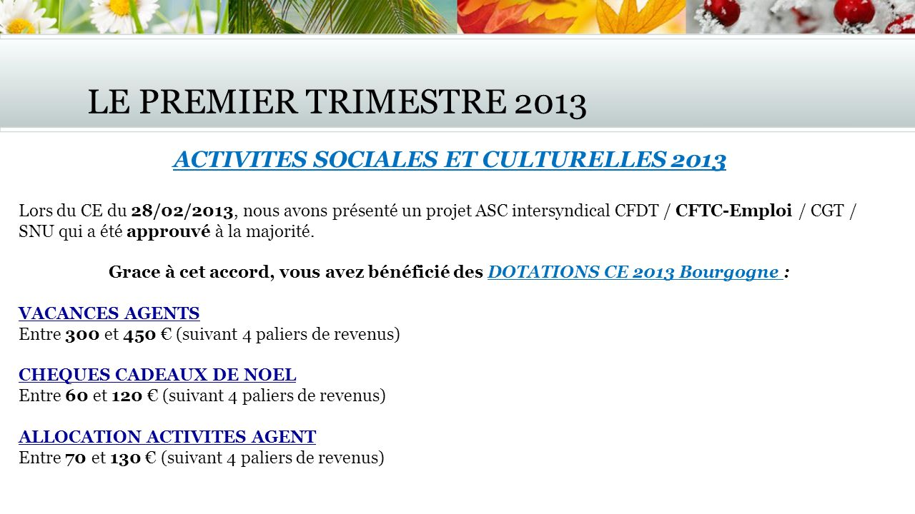 LE PREMIER TRIMESTRE 2013 ACTIVITES SOCIALES ET CULTURELLES 2013 Lors du CE du 28/02/2013, nous avons présenté un projet ASC intersyndical CFDT / CFTC