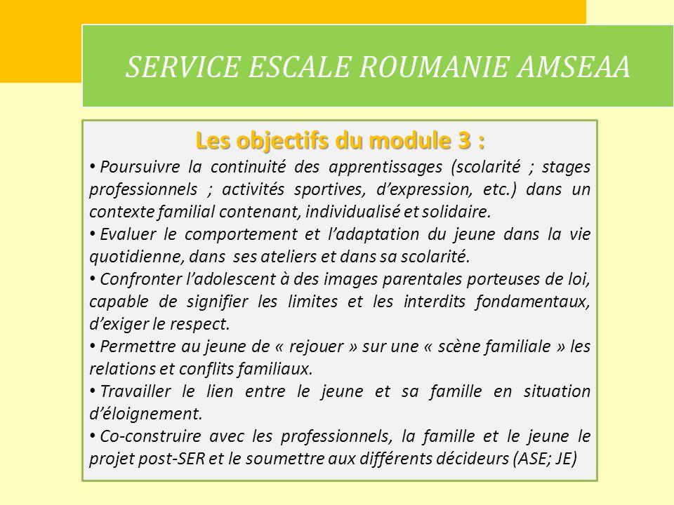 SERVICE ESCALE ROUMANIE AMSEAA Les objectifs du module 3 : Poursuivre la continuité des apprentissages (scolarité ; stages professionnels ; activités