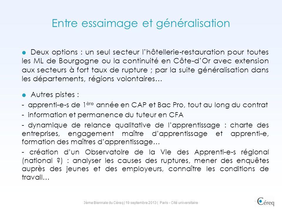 Entre essaimage et généralisation Deux options : un seul secteur lhôtellerie-restauration pour toutes les ML de Bourgogne ou la continuité en Côte-dOr