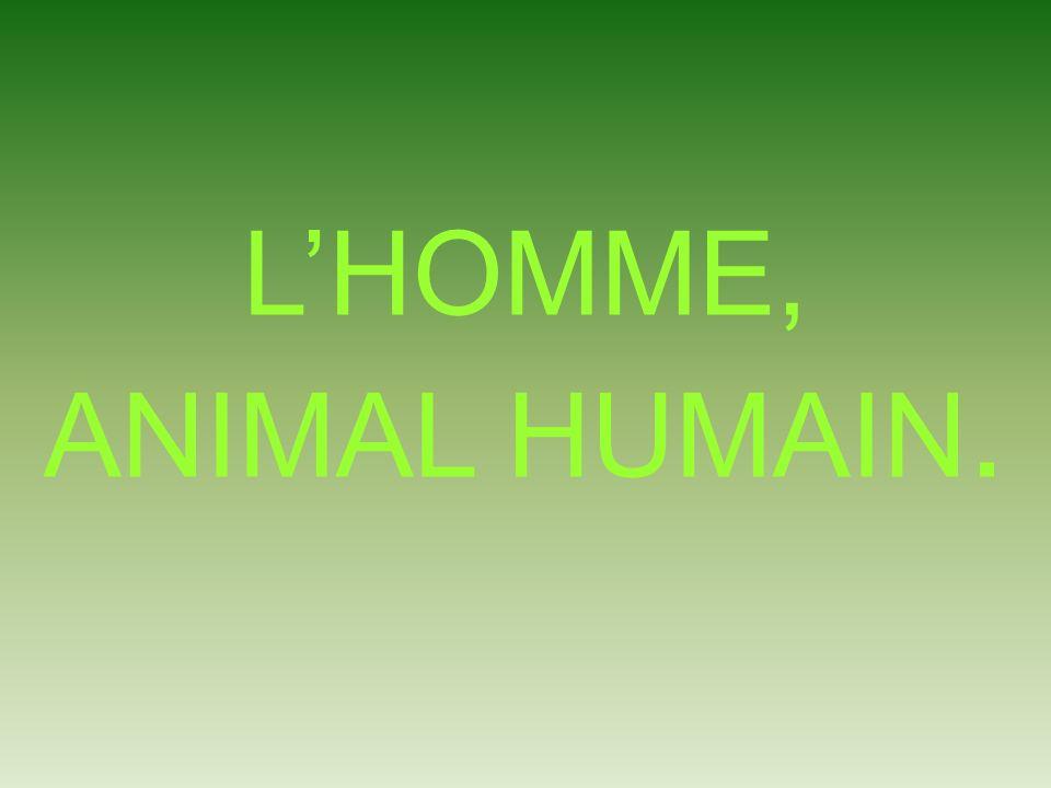 LHOMME, ANIMAL HUMAIN.