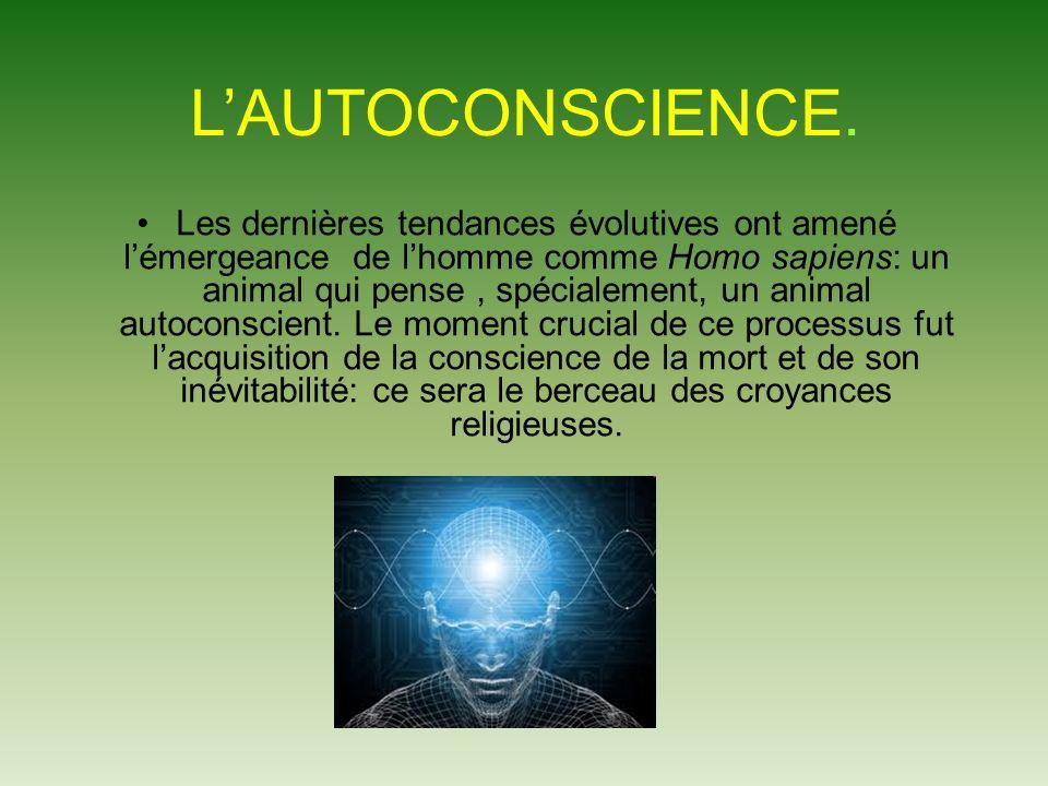 LAUTOCONSCIENCE.