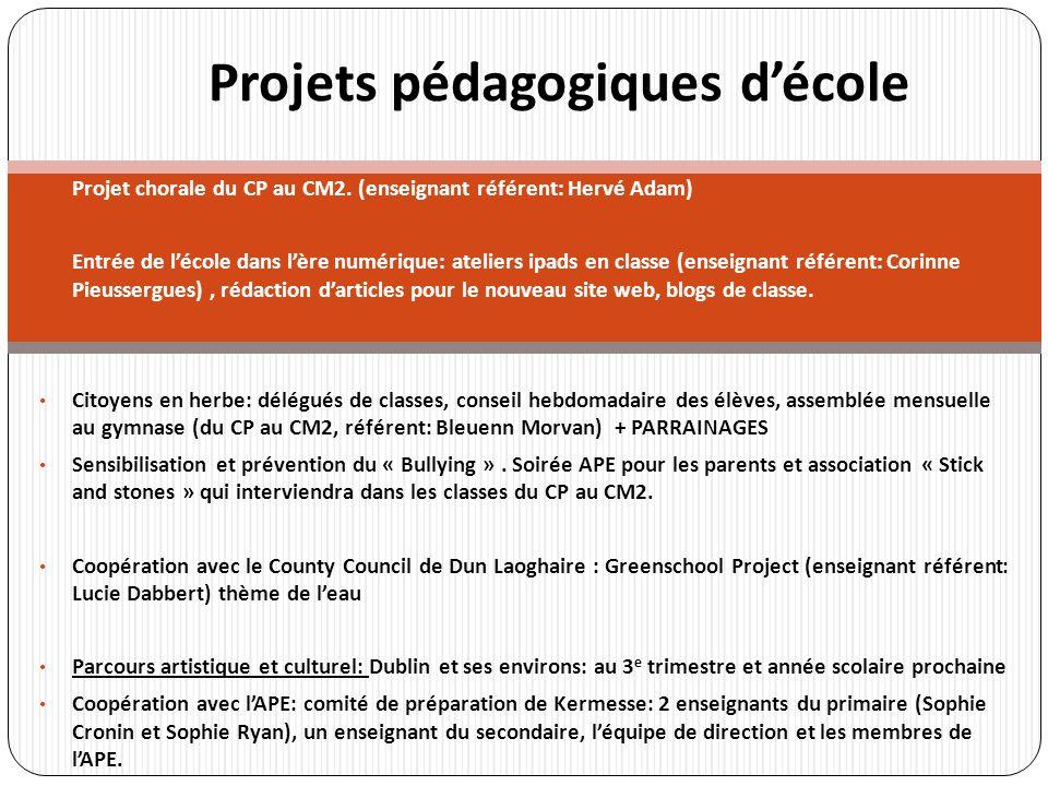 Projet chorale du CP au CM2. (enseignant référent: Hervé Adam) Entrée de lécole dans lère numérique: ateliers ipads en classe (enseignant référent: Co