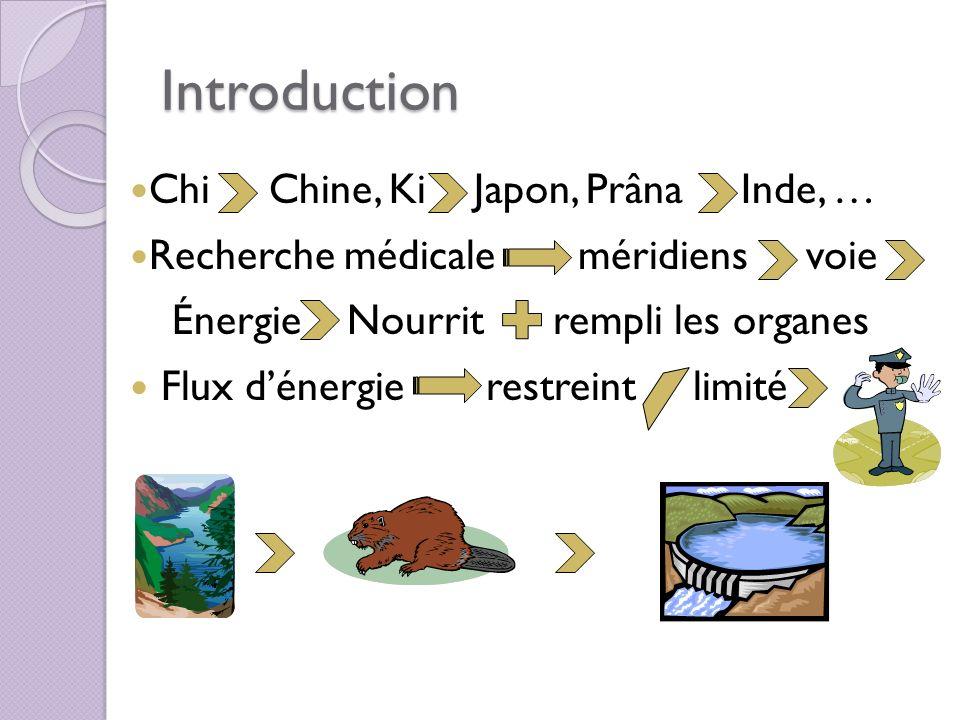 Introduction Chi Chine, Ki Japon, Prâna Inde, … Recherche médicale méridiens voie Énergie Nourrit rempli les organes Flux dénergie restreint limité