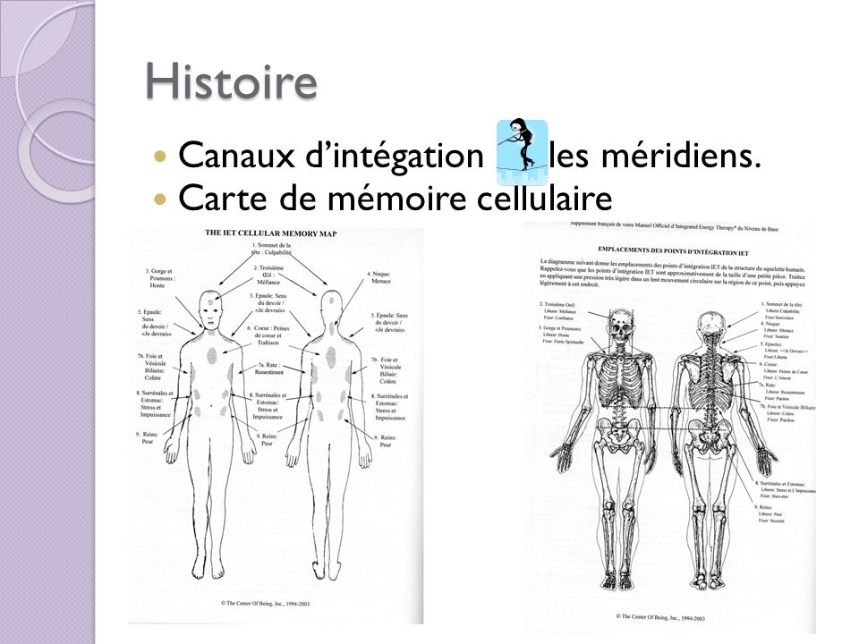 Histoire Canaux dintégation les méridiens. Carte de mémoire cellulaire