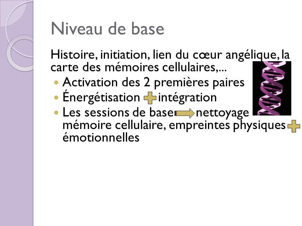 Niveau de base Histoire, initiation, lien du cœur angélique, la carte des mémoires cellulaires,... Activation des 2 premières paires Énergétisation in