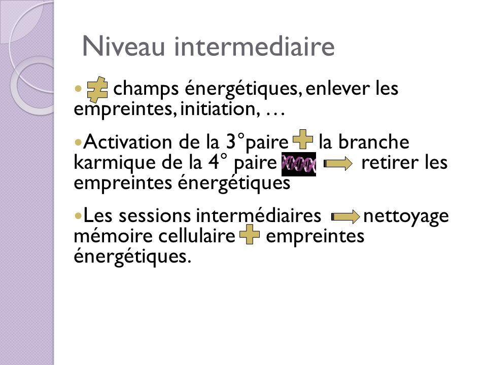 Niveau intermediaire champs énergétiques, enlever les empreintes, initiation, … Activation de la 3°paire la branche karmique de la 4° paire retirer le