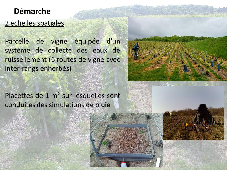 Démarche 2 échelles spatiales Parcelle de vigne équipée dun système de collecte des eaux de ruissellement (6 routes de vigne avec inter-rangs enherbés