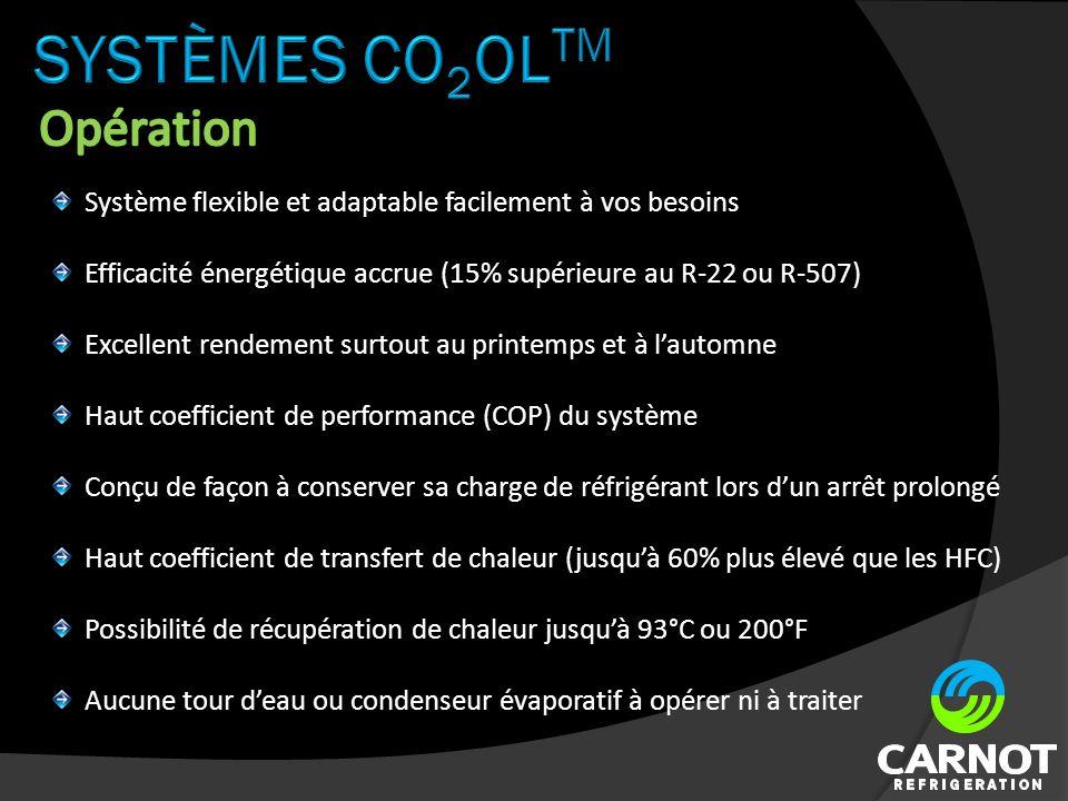 Système flexible et adaptable facilement à vos besoins Efficacité énergétique accrue (15% supérieure au R-22 ou R-507) Excellent rendement surtout au printemps et à lautomne Haut coefficient de performance (COP) du système Conçu de façon à conserver sa charge de réfrigérant lors dun arrêt prolongé Haut coefficient de transfert de chaleur (jusquà 60% plus élevé que les HFC) Possibilité de récupération de chaleur jusquà 93°C ou 200°F Aucune tour deau ou condenseur évaporatif à opérer ni à traiter