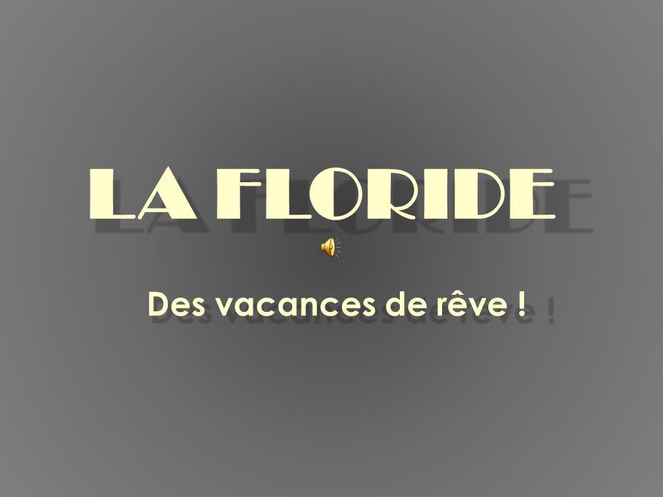 LA FLORIDE Des vacances de rêve !