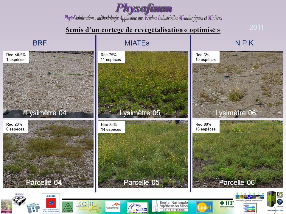 Semis dun cortège de revégétalisation « optimisé » BRF MIATEs N P K Parcelle 04 Parcelle 05 Parcelle 06 Rec 20% 6 espèces Rec 85% 14 espèces Rec 80% 1
