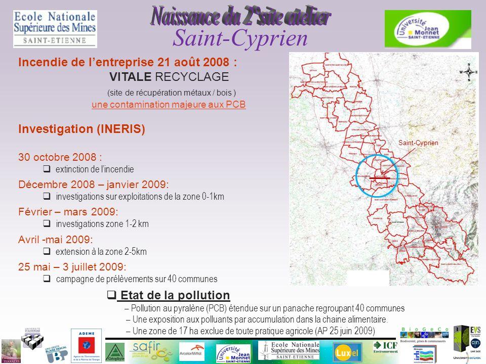 Incendie de lentreprise 21 août 2008 : VITALE RECYCLAGE (site de récupération métaux / bois ) une contamination majeure aux PCB Investigation (INERIS)