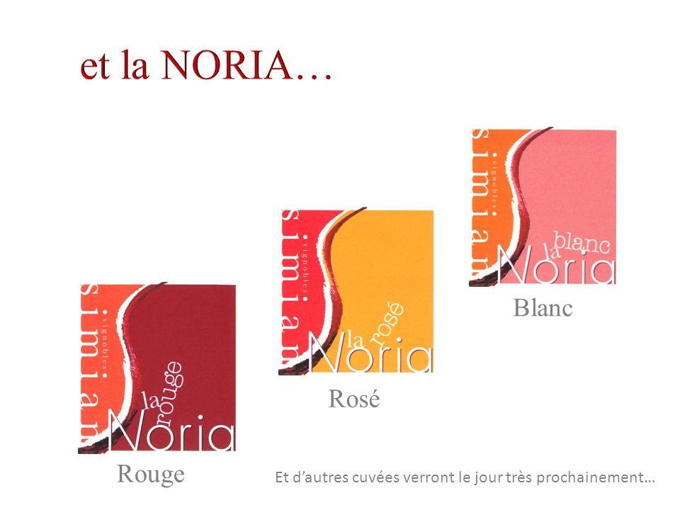 Blanc Rosé Rouge Et dautres cuvées verront le jour très prochainement…