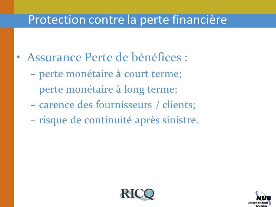 Protection contre la perte financière Assurance Perte de bénéfices : –perte monétaire à court terme; –perte monétaire à long terme; –carence des fourn