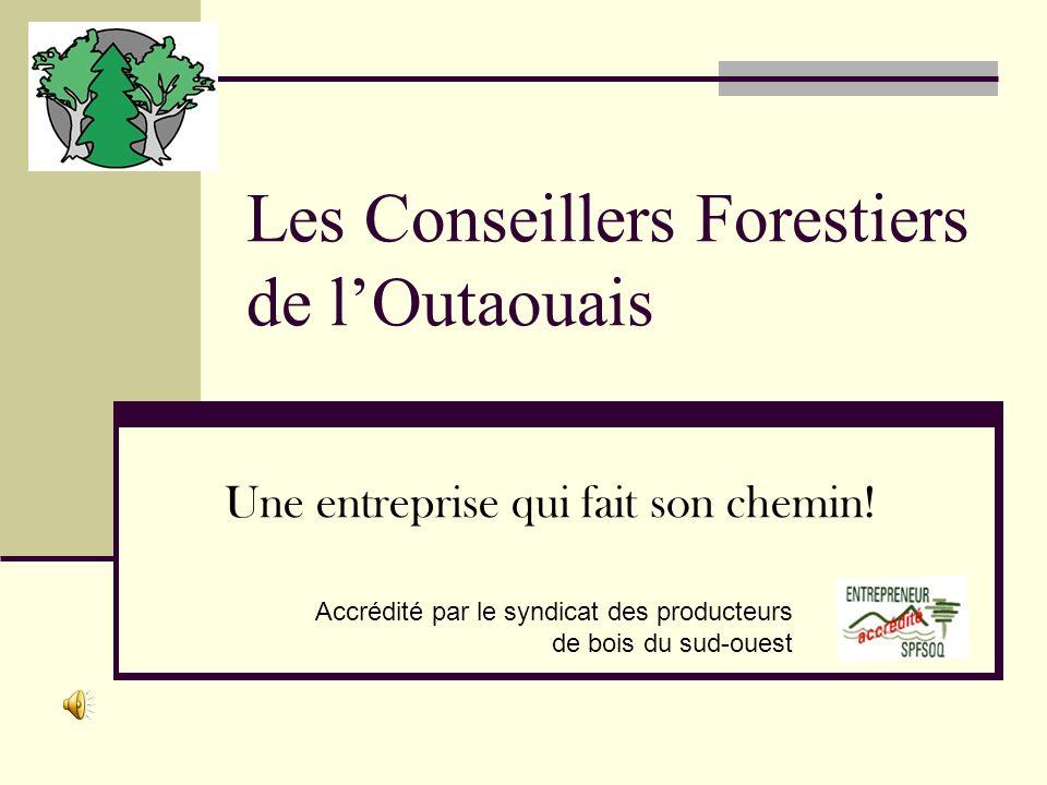 Les Conseillers Forestiers de lOutaouais Une entreprise qui fait son chemin.