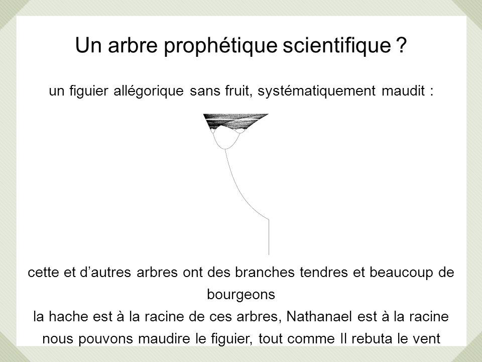 Un arbre prophétique scientifique ? un figuier allégorique sans fruit, systématiquement maudit : cette et dautres arbres ont des branches tendres et b