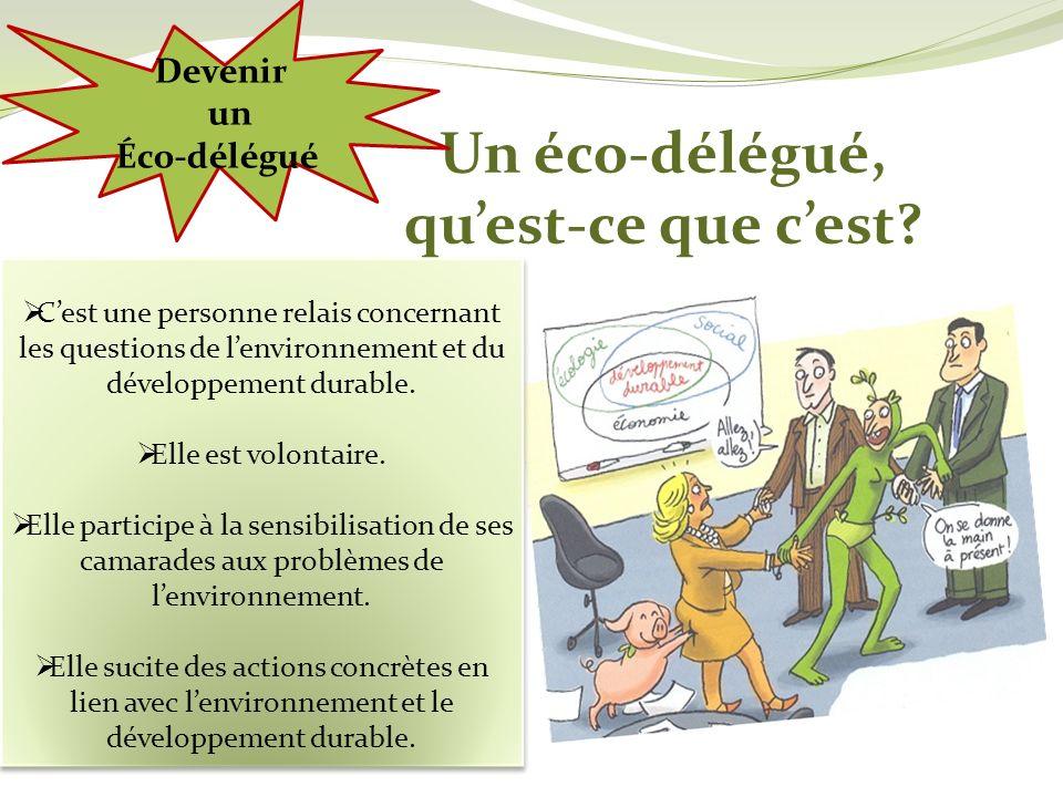 Un éco-délégué, quest-ce que cest? Cest une personne relais concernant les questions de lenvironnement et du développement durable. Elle est volontair