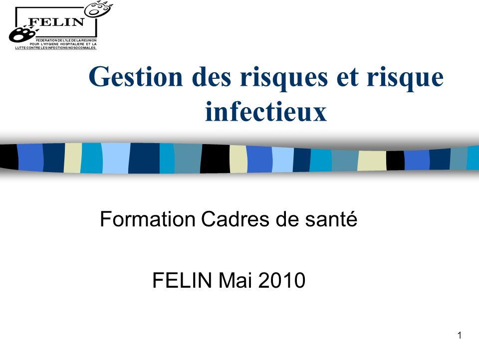 1 Gestion des risques et risque infectieux Formation Cadres de santé FELIN Mai 2010