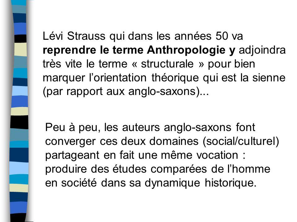 Peu à peu, les auteurs anglo-saxons font converger ces deux domaines (social/culturel) partageant en fait une même vocation : produire des études comp