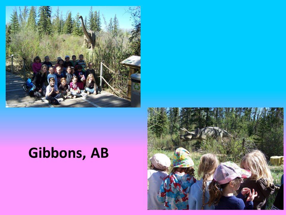 Gibbons, AB
