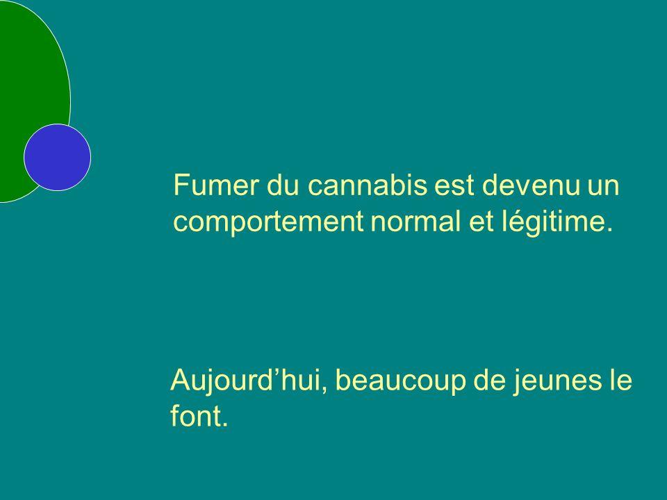 Fumer du cannabis est devenu un comportement normal et légitime.