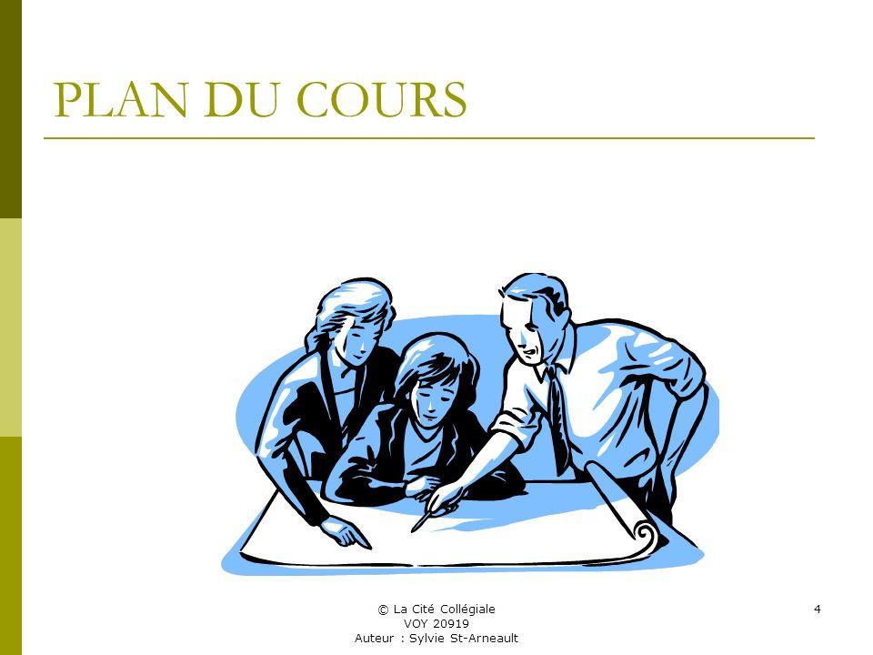© La Cité Collégiale VOY 20919 Auteur : Sylvie St-Arneault 4 PLAN DU COURS