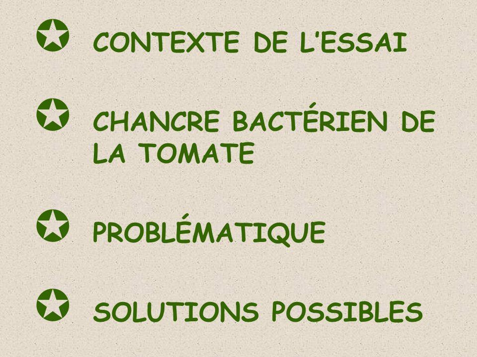 CONTEXTE DE LESSAI CHANCRE BACTÉRIEN DE LA TOMATE PROBLÉMATIQUE SOLUTIONS POSSIBLES
