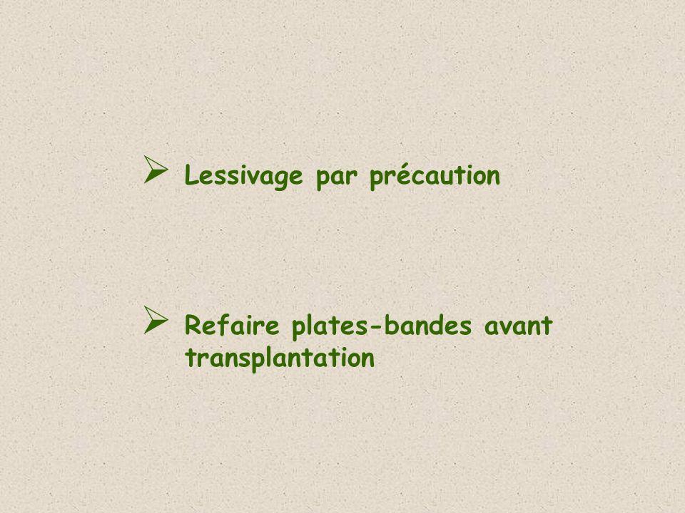 Lessivage par précaution Refaire plates-bandes avant transplantation