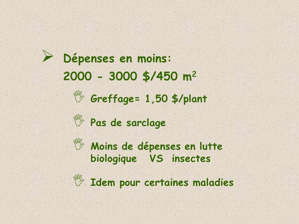 Dépenses en moins: 2000 - 3000 $/450 m 2 Greffage= 1,50 $/plant Pas de sarclage Moins de dépenses en lutte biologique VS insectes Idem pour certaines