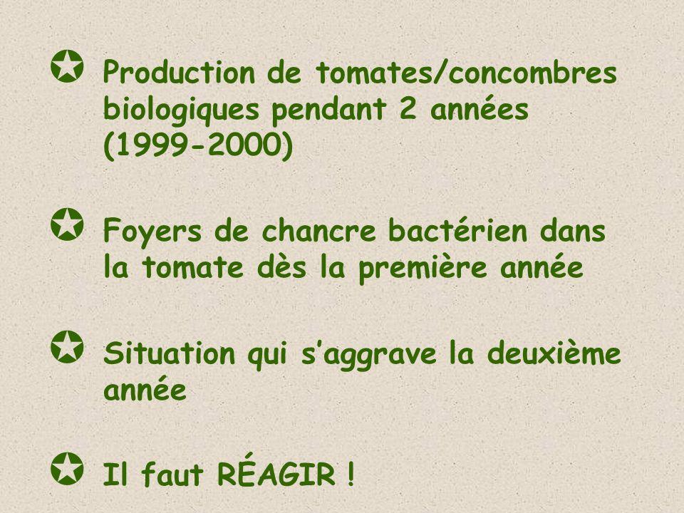 Production de tomates/concombres biologiques pendant 2 années (1999-2000) Foyers de chancre bactérien dans la tomate dès la première année Situation q
