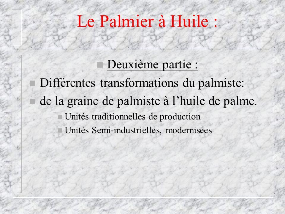 Le Palmier à Huile : n Deuxième partie : n Différentes transformations du palmiste: n de la graine de palmiste à lhuile de palme. n Unités traditionne