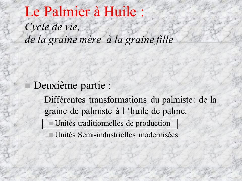 Le Palmier à Huile : Cycle de vie, de la graine mère à la graine fille n Deuxième partie : – Différentes transformations du palmiste: de la graine de
