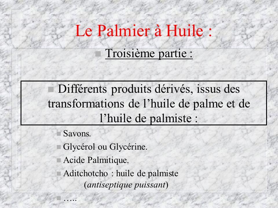Le Palmier à Huile : n Troisième partie : n Différents produits dérivés, issus des transformations de lhuile de palme et de lhuile de palmiste : n Sav