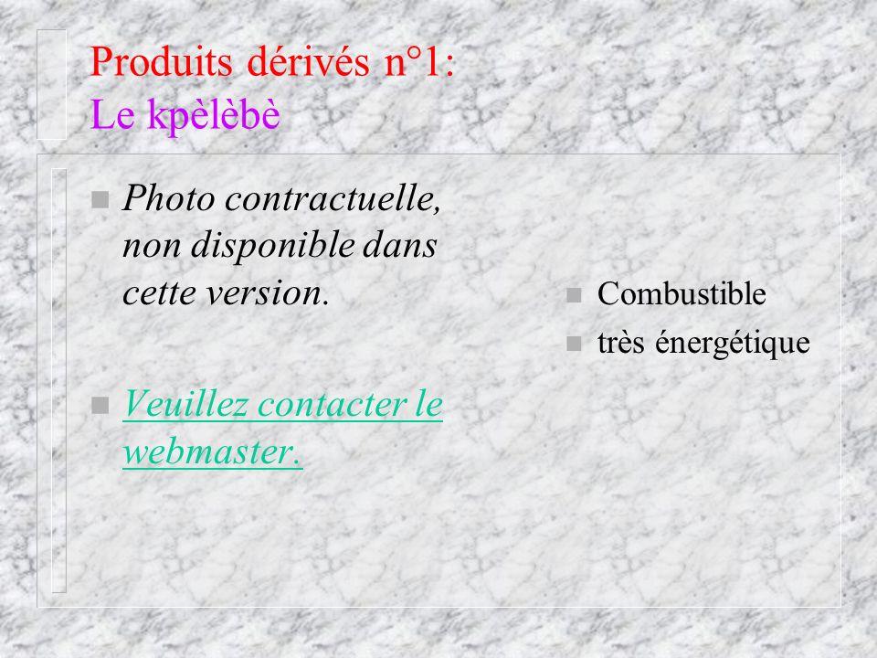 Produits dérivés n°1: Le kpèlèbè n Combustible n très énergétique n Photo contractuelle, non disponible dans cette version. n Veuillez contacter le we